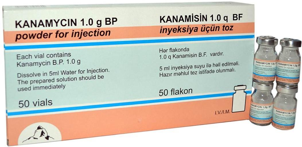 Kanamycine!..jpg2